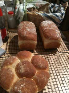 Farmgirl Fare bread recipe, it was nice knowing you while I could. Baked goods, I miss you so much.